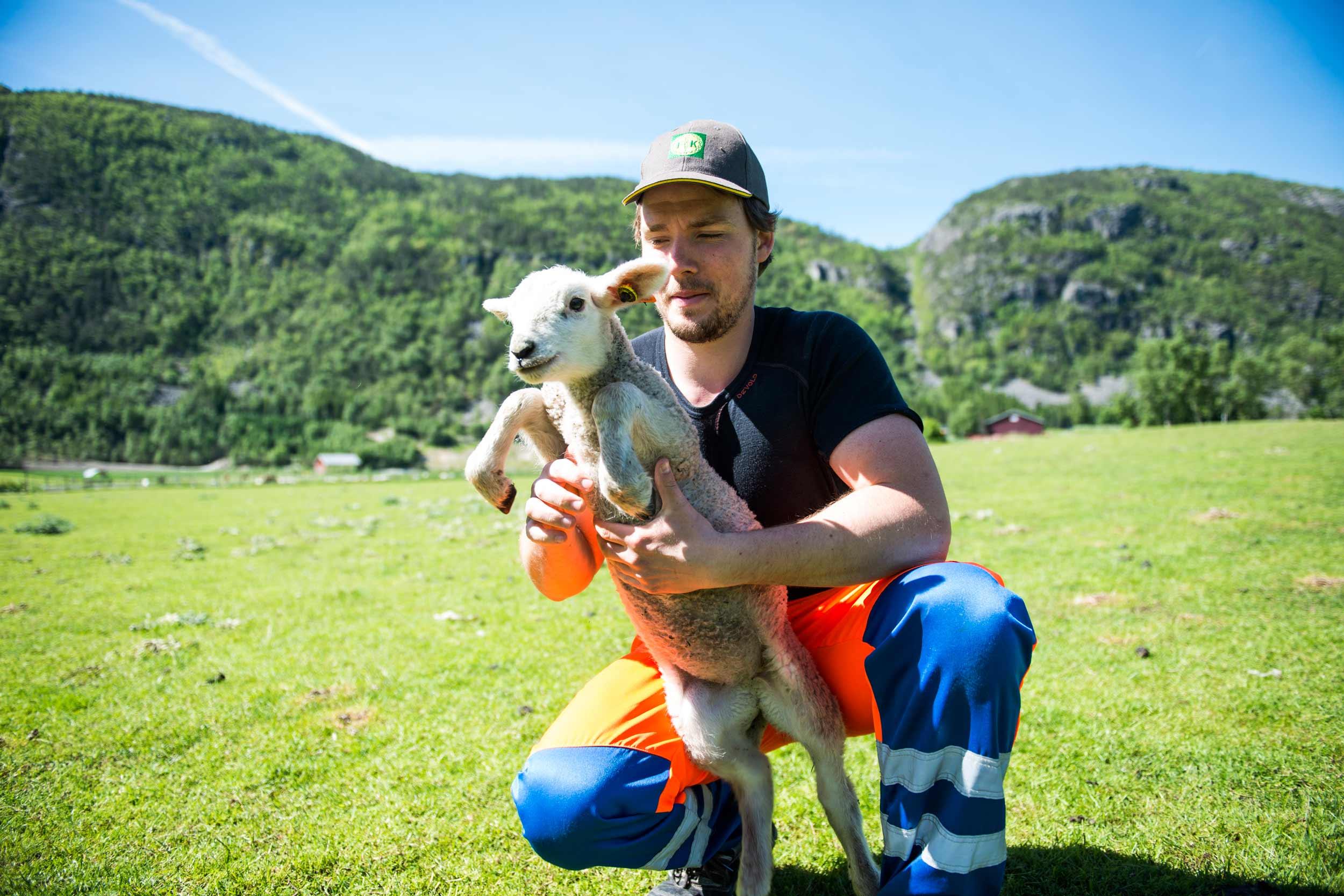 Partner REgnskap - Økonomitjenester for landbruket